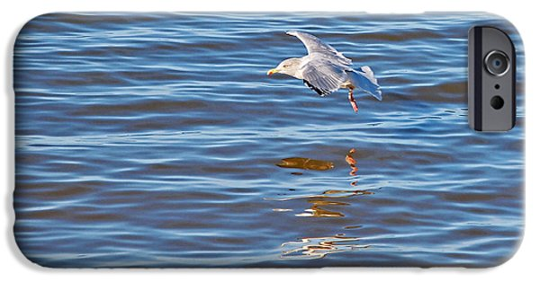 Flying Seagull iPhone Cases - Skimming The Waves iPhone Case by Gill Billington