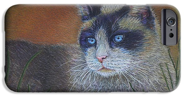 Cat Drawing Drawings iPhone Cases - Skweela iPhone Case by Sari Sauls