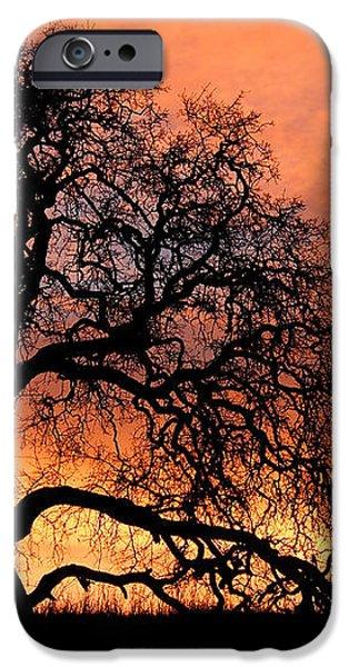 Sky On Fire iPhone Case by Priya Ghose