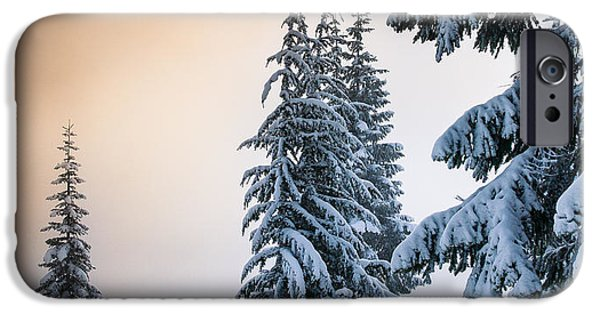 Snowy iPhone Cases - Skyline Lake Forest iPhone Case by Inge Johnsson