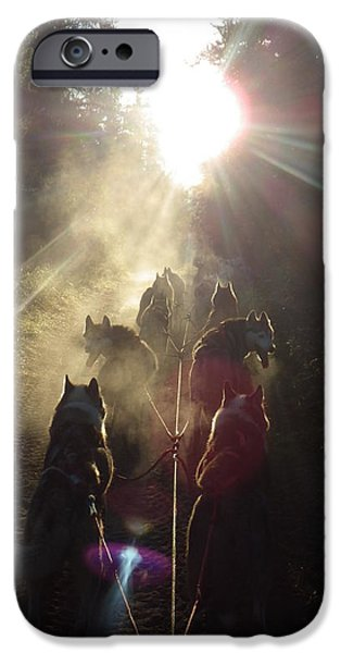 Recently Sold -  - Husky iPhone Cases - Sled Dogs in the Mist iPhone Case by Karen  Ramstead