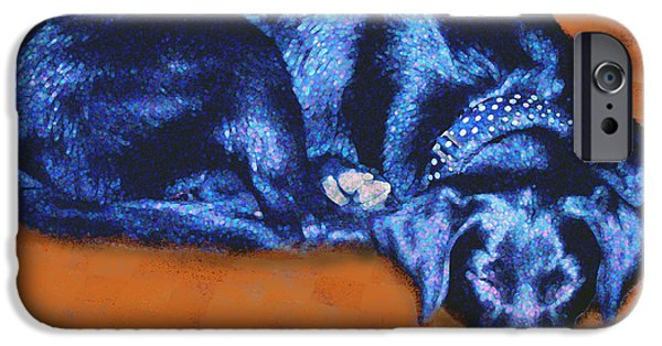 Mixed Labrador Retriever iPhone Cases - Sleeping Blue Dog labrador retriever iPhone Case by Ann Powell
