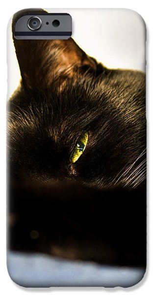 Sleeping with one eye open iPhone Case by Bob Orsillo