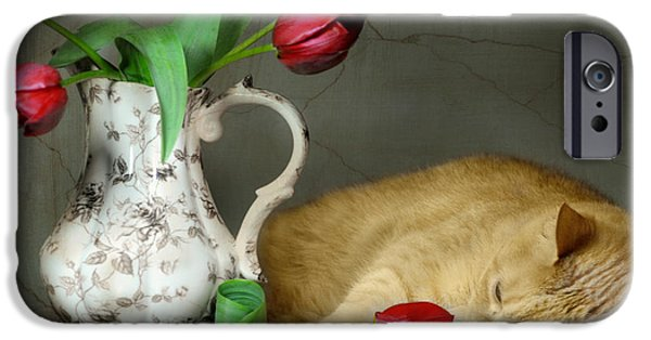 Still Life With Pitcher iPhone Cases - Sleepy Tulips iPhone Case by Diana Angstadt
