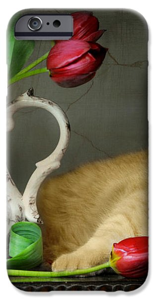 Sleepy Tulips iPhone Case by Diana Angstadt