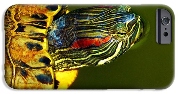 Slider Photographs iPhone Cases - Slider iPhone Case by Robert Geary