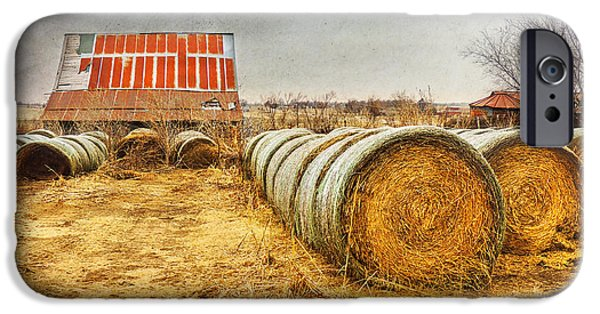 Recently Sold -  - Old Barns iPhone Cases - Slumbering in the Countryside iPhone Case by Betty LaRue