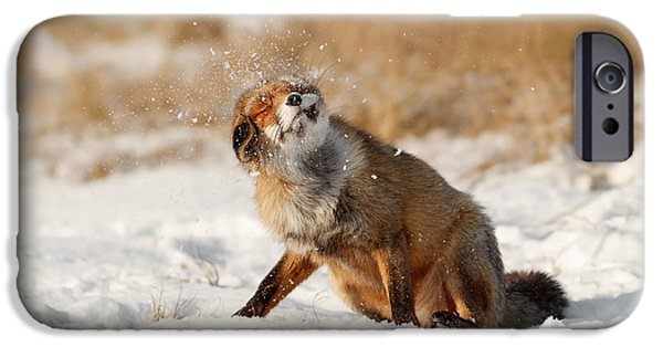 Snow Flake iPhone Cases - Slush Puppy Red Fox in The SNow iPhone Case by Roeselien Raimond