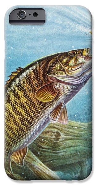 Jon Q Wright iPhone Cases - Smallmouth Bass iPhone Case by JQ Licensing