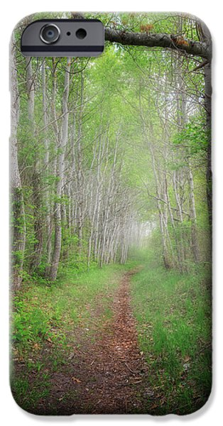 Spring Landscape iPhone Cases - Smalls Swamp Trail iPhone Case by Bill  Wakeley