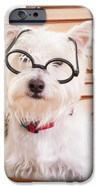Smart Doggie iPhone Case by Edward Fielding