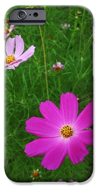 Lucy D iPhone Cases - Smiles iPhone Case by Lucy D