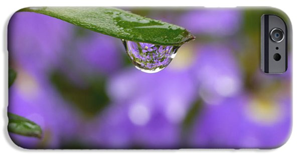 Purple And Green iPhone Cases - Smiling Drop iPhone Case by Irina Wardas