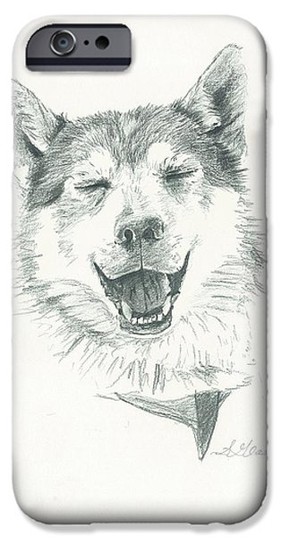Husky Drawings iPhone Cases - Smiling Husky iPhone Case by Sarah Glass