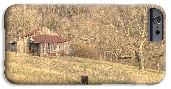 Tennessee Hay Bales iPhone Cases - Smoky Mountain Barn 8 iPhone Case by Douglas Barnett