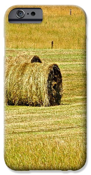 Smoky Mountain Hay iPhone Case by Frozen in Time Fine Art Photography