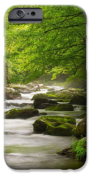Smoky Mountains Solitude - Great Smoky Mountains National Park iPhone Case by Dave Allen