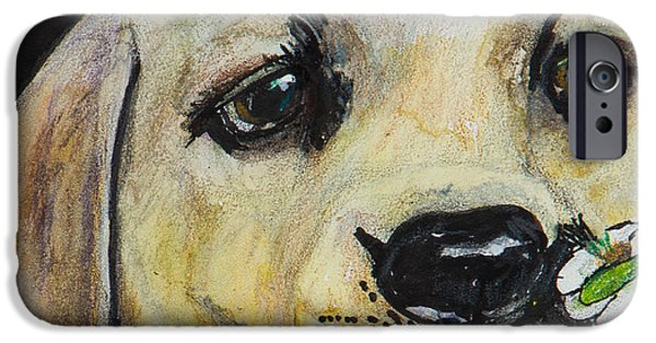 Mixed Labrador Retriever iPhone Cases - Sniff the Flowers iPhone Case by Roger Wedegis