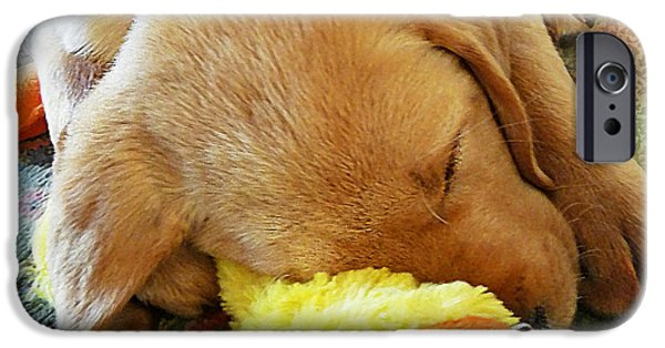 Labrador Puppy iPhone Cases - Snoozing With My Duck Fell Asleep On A Job Puppy iPhone Case by Irina Sztukowski