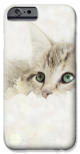 Snow Baby iPhone Case by Amy Tyler