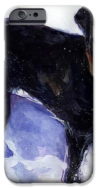 Snow Belle iPhone Case by Molly Poole