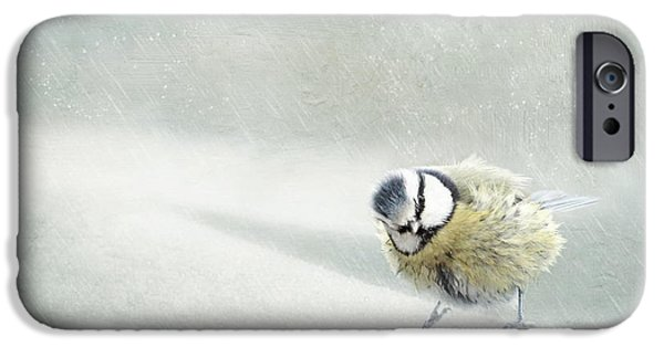 Animal Photography Mixed Media iPhone Cases - Snow Bird iPhone Case by Heike Hultsch