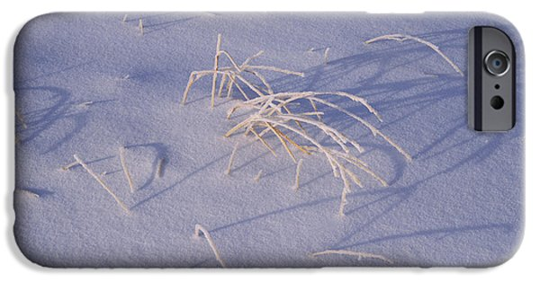 Covering Up iPhone Cases - Snow Covered Grass On South Rim, Crater iPhone Case by Panoramic Images