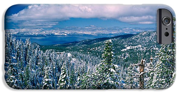 Pines iPhone Cases - Snow Covered Pine Trees In A Forest iPhone Case by Panoramic Images