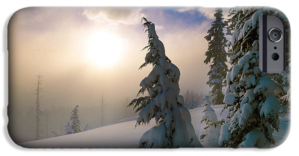 Snowy Day iPhone Cases - Snow-covered Pine Trees, Sunrise iPhone Case by Panoramic Images