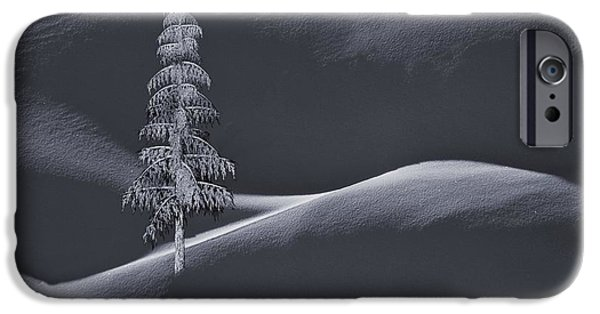 Business Digital Art iPhone Cases - Snow Covered Tree and Mountains BW iPhone Case by David Dehner