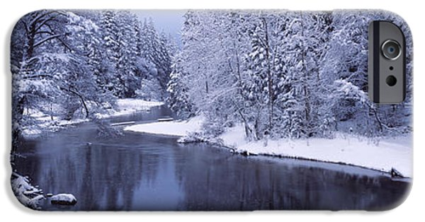 Snow Scene iPhone Cases - Snow Covered Trees Along A River iPhone Case by Panoramic Images