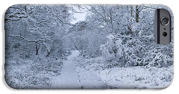 Snow Scene iPhone Cases - Snow Covered Trees In A Park, Hampstead iPhone Case by Panoramic Images