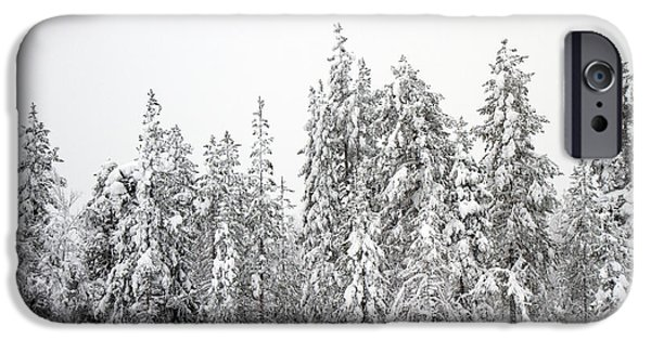 Lappi iPhone Cases - Snow Covered Trees  iPhone Case by Lilach Weiss