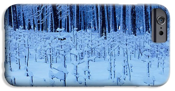 Snow Scene iPhone Cases - Snow Covered Trees On A Landscape iPhone Case by Panoramic Images
