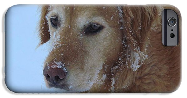 Dogs iPhone Cases - Snow Day iPhone Case by Elizabeth Dow