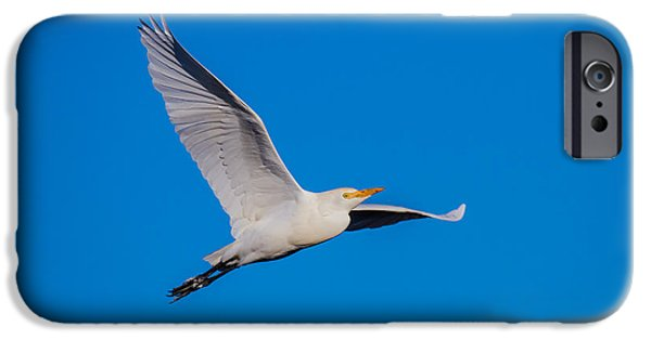 Birds iPhone Cases - Snow Egret in Flight iPhone Case by Andres Leon
