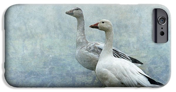 Geese iPhone Cases - Snow Geese iPhone Case by Angie Vogel