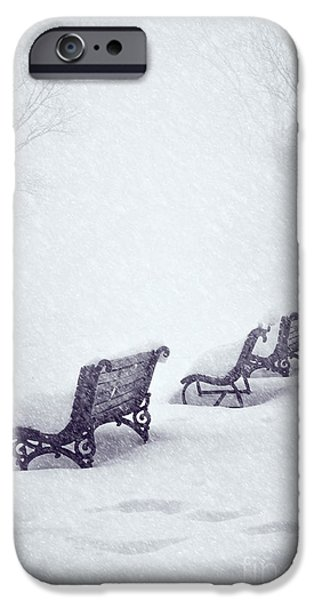 Snowy Pyrography iPhone Cases - Snow in the Park iPhone Case by Jelena Jovanovic