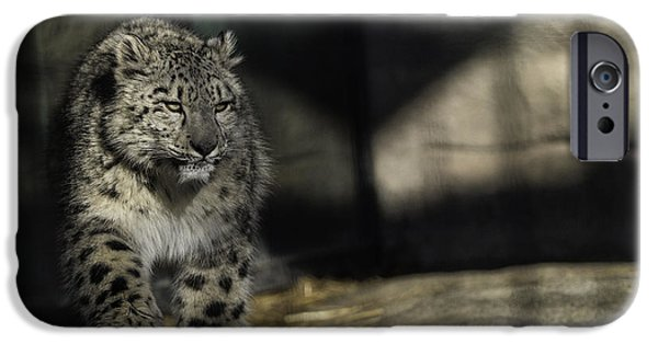 Snow iPhone Cases - Snow Leopard 2 iPhone Case by Everet Regal