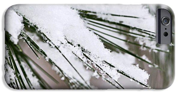 Snowy iPhone Cases - Snow on pine needles iPhone Case by Elena Elisseeva