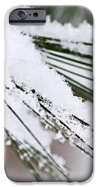 Snow on pine needles iPhone Case by Elena Elisseeva