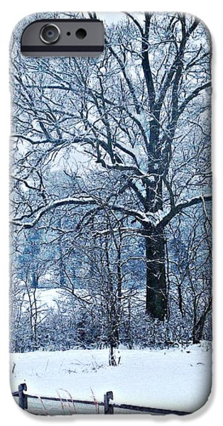 Christmas Holiday Scenery iPhone Cases - Snow iPhone Case by Sarah Loft
