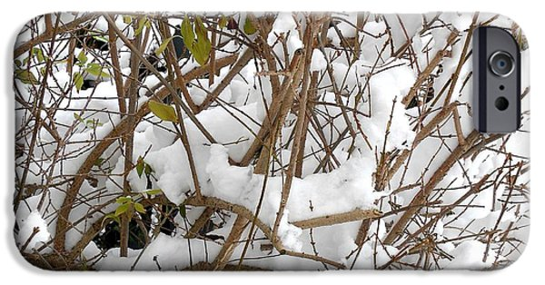 Snow Scene iPhone Cases - Snow Scene 16 iPhone Case by Patrick J Murphy