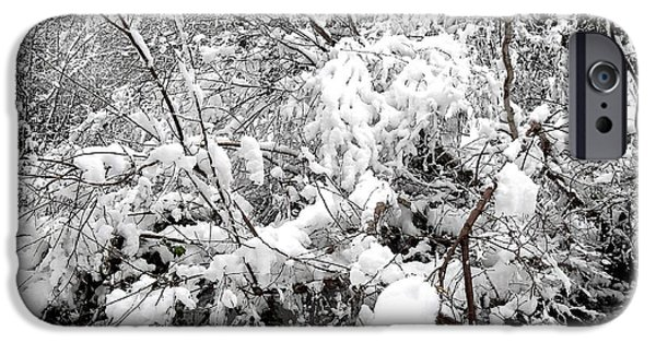 Snow Scene iPhone Cases - Snow Scene 4 iPhone Case by Patrick J Murphy