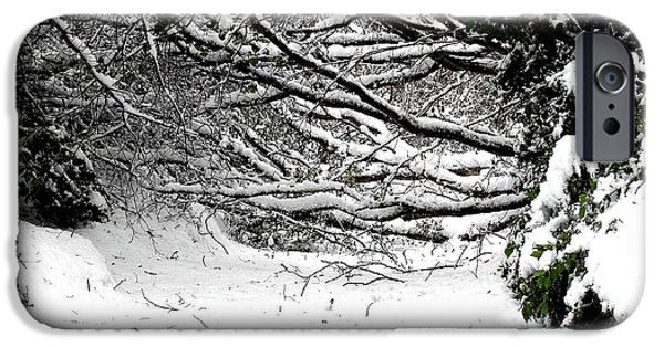 Snow Scene iPhone Cases - Snow Scene 5 iPhone Case by Patrick J Murphy