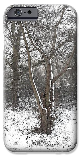 SNOW SCENE 7 iPhone Case by Patrick J Murphy