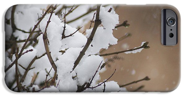 Rural Snow Scenes iPhone Cases - Snow shower iPhone Case by Carol Lynch