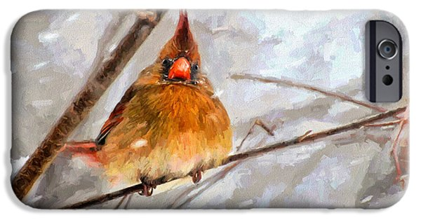 Winter Storm iPhone Cases - Snow Surprise - Painterly iPhone Case by Lois Bryan