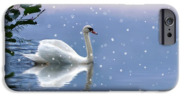 Swans... iPhone Cases - Snow Swan  iPhone Case by Jessica Jenney