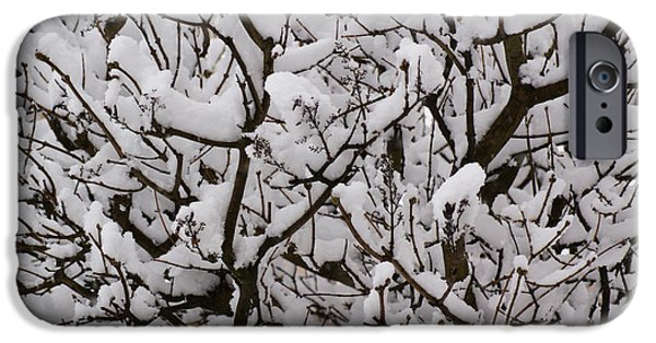 Rural Snow Scenes iPhone Cases - Snow tree iPhone Case by Carol Lynch
